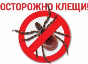 КЛЕЩИ. Оперативная информация по поводу укусов клещей с 26.03.2019 по 16.05.2019