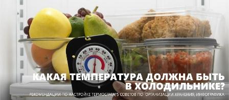 Температура холодильника – константа безопасного питания