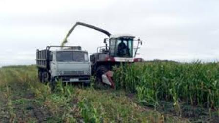 О месячнике безопасности труда во время уборки кукурузы