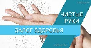 «Чистота рук – залог здоровья»  – главный лейтмотив профилактического движения «Чистые руки»