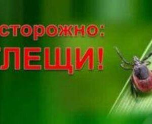 Оперативная информация по поводу укусов  клещей по состоянию на 25.06.2021