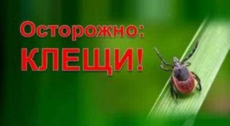 Оперативная информация по поводу укусов  клещей по состоянию на 18.06.2021