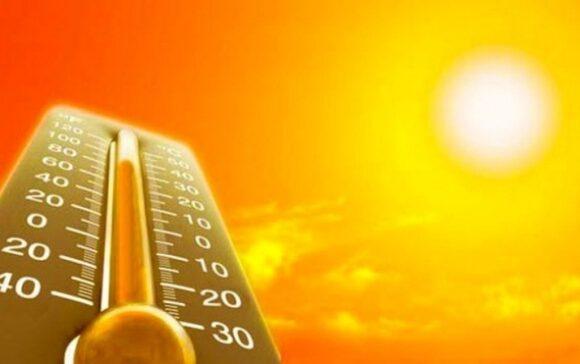 Как легче пережить жару?