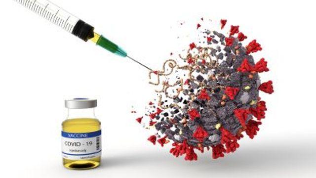 Коллективный иммунитет защитит от вируса