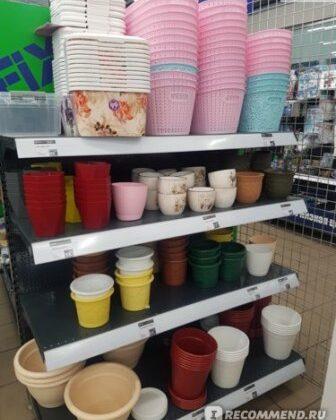 О несоответствии пластиковых чашек торговой марки SINSAY